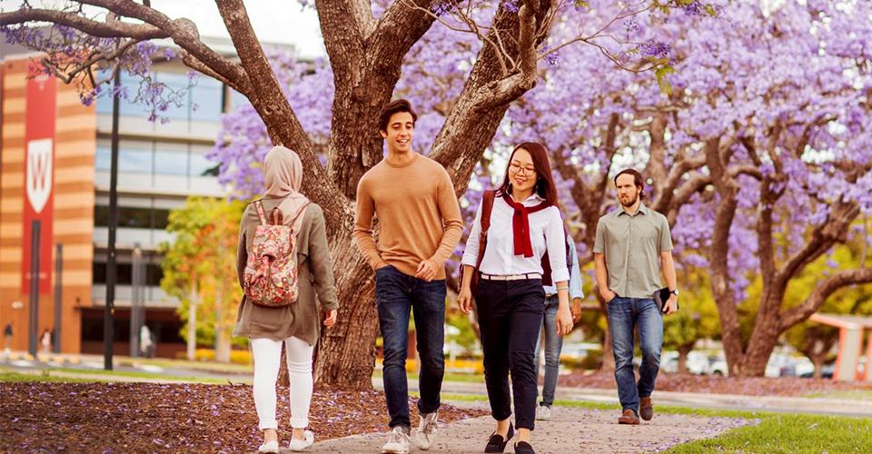 Du học bán phần với chương trình Cử nhân Kinh doanh Western Sydney BBUS