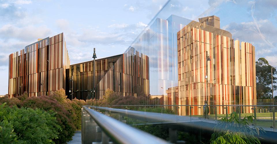 Lộ trình học tập mùa dịch cho du học sinh Đại học Macquarie